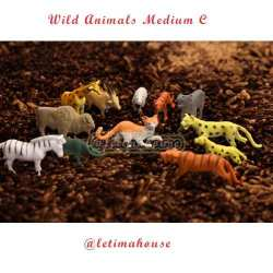Wild Animals Miniature Medium C