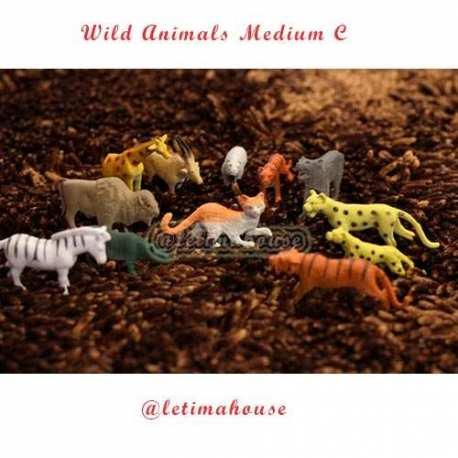 Wild Animals Miniature Medium C