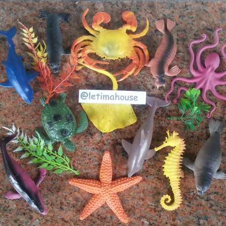 Sea Creatures Miniature Large