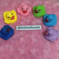 Mix Color Rubber Duck